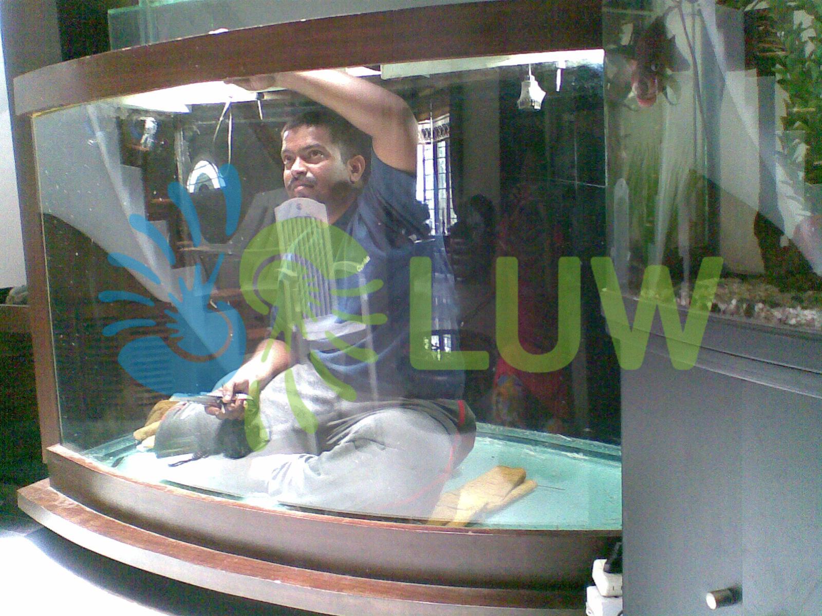 Aquarium Installation And Maintenance